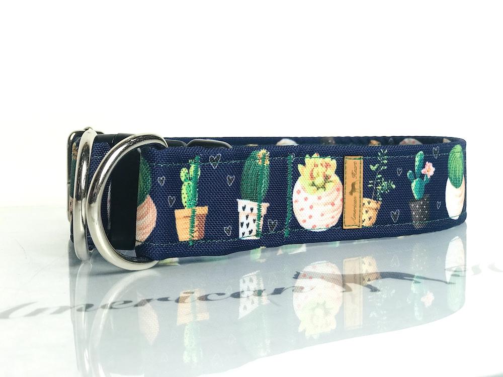 Kaktusy na granacie zatrzask z zabezpieczeniem 4 cm