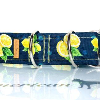 Cytrynki Obroża półzaciskowa 4 cm